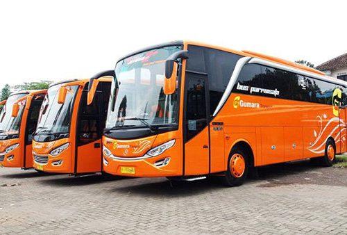 Big Bus 1